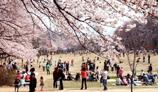 首爾兒童大公園