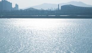 漢江銀白色
