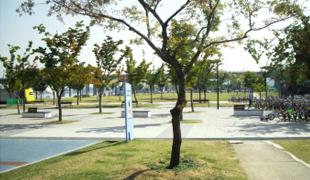 綠蔭樹廣場