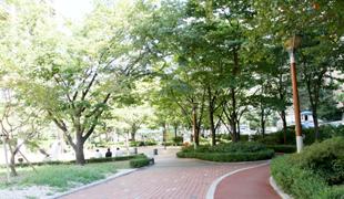 都染綠地公園