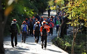迎接和煦春光  請挑戰走完首爾環山步道全程